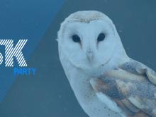 RISK Party – Janvier, Février, Mars 2017